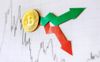 Crypto Briefing: Anchor's CEO Daniel Popa on Bitcoin's Volatility and the Importance of a Predictable Store of Value
